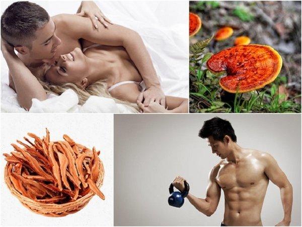 Nấm linh chi tốt cho sức khỏe nam giới