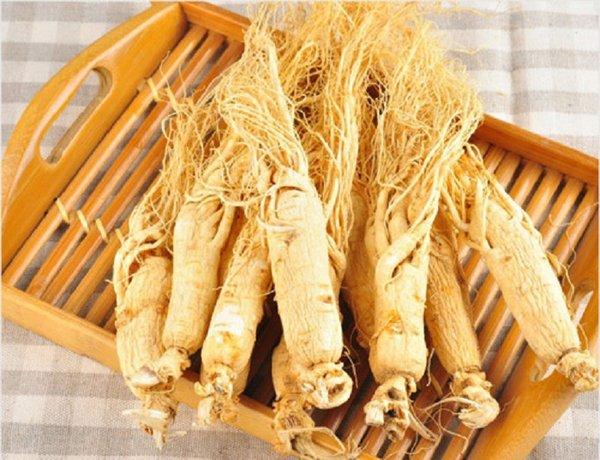 Nhân sâm là thảo dược phổ biến được dùng trong Đông y