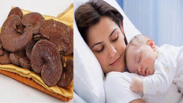 Phụ nữ sau sinh dùng nấm linh chi có tốt không