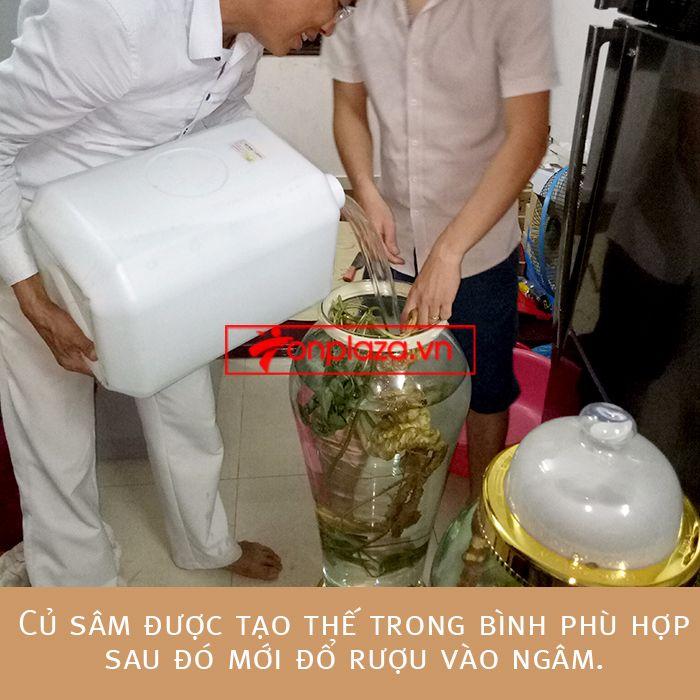Bình ngâm sâm Ngọc Linh tươi loại 1,9kg/củ 4