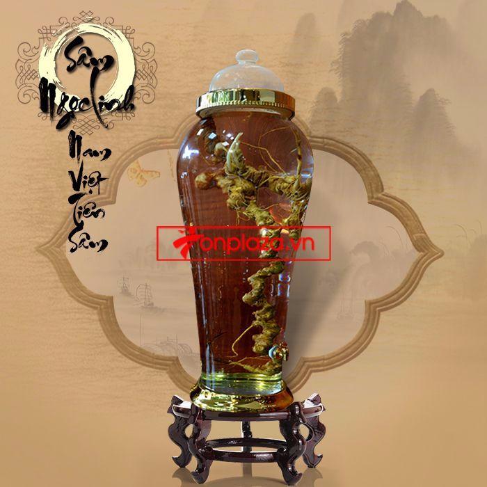 Bình ngâm sâm Ngọc Linh tươi loại 1,9kg/củ 8