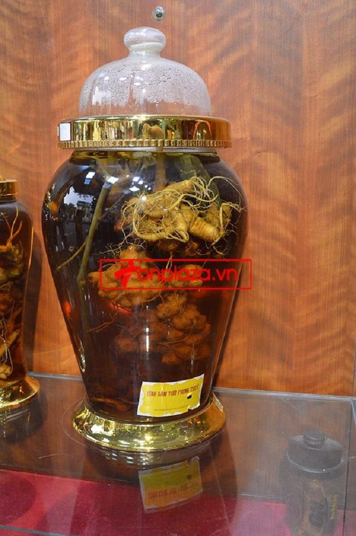Bình ngâm sâm Ngọc Linh núi tươi loại 1,75 kg/củ 2