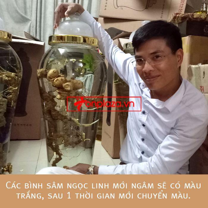 Bình ngâm sâm Ngọc Linh tự nhiên loại 2kg/củ 2