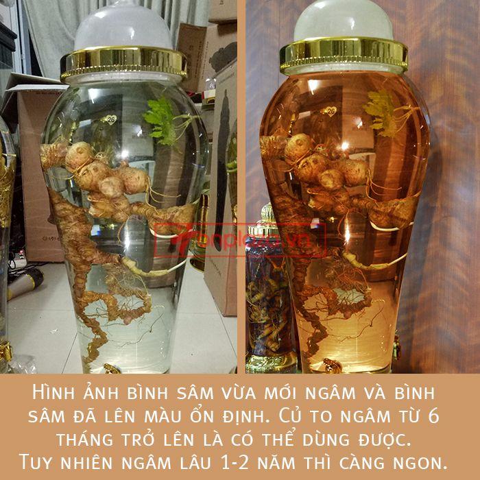 Bình ngâm sâm Ngọc Linh tự nhiên loại 2kg/củ 4