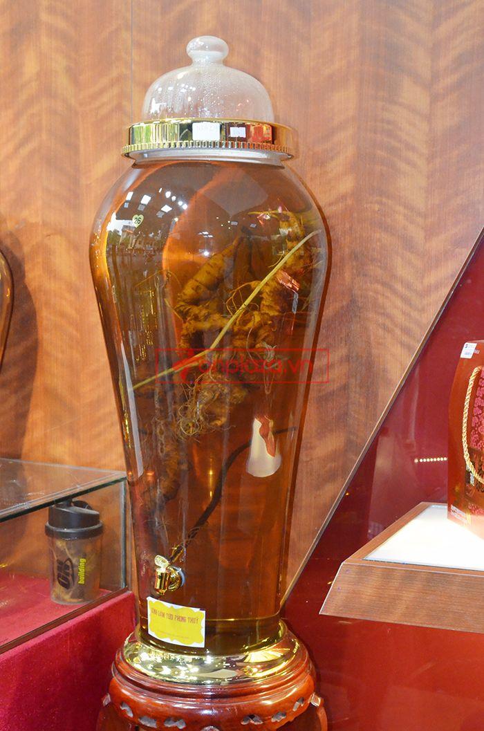 Bình ngâm sâm Ngọc Linh tươi 70 năm tuổi loại 1,65kg/củ 1