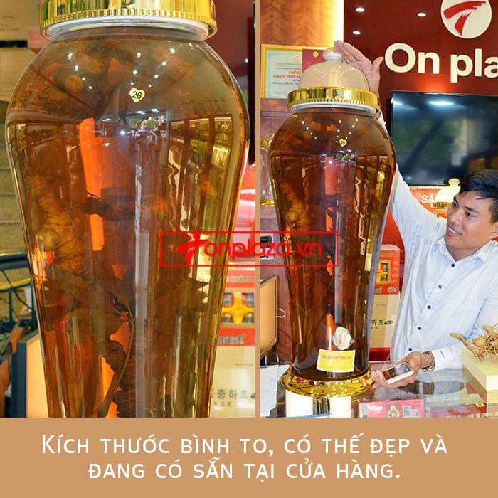 Bình ngâm sâm Ngọc Linh tươi loại 1,4 kg/củ 1