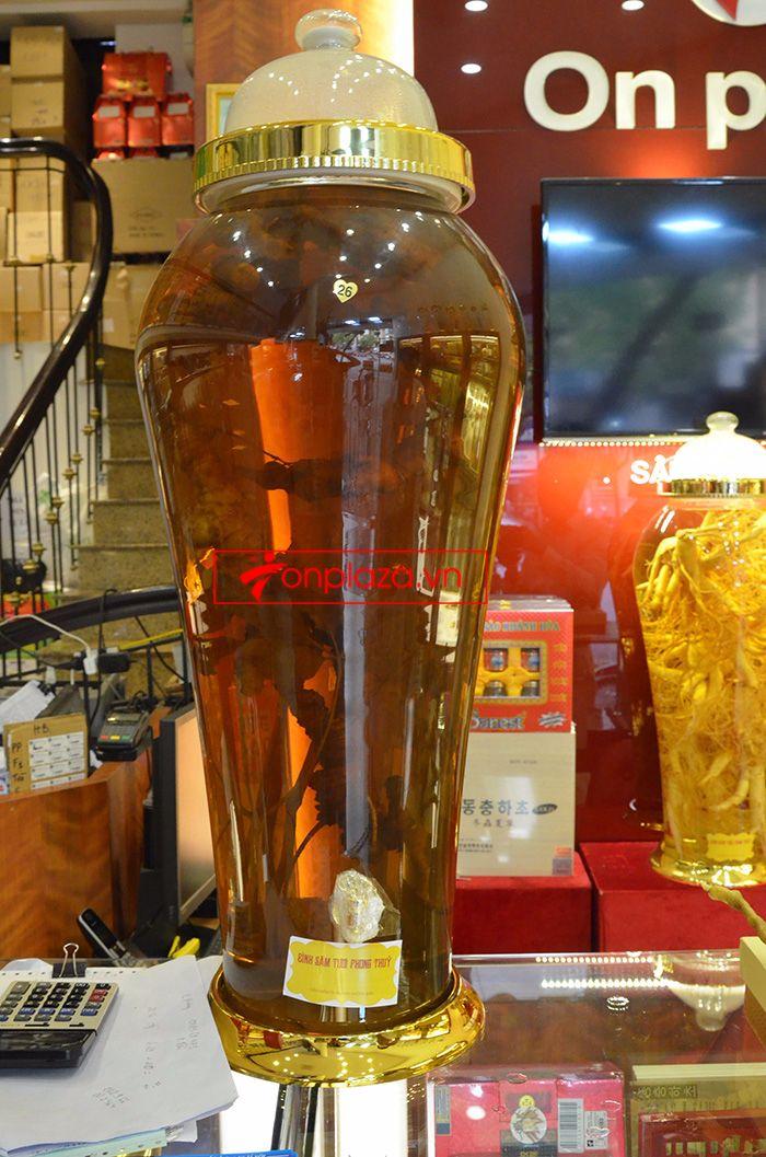 Bình ngâm sâm Ngọc Linh tươi loại 1,4 kg/củ 2