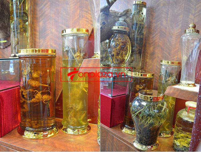 Sâm ngọc linh và những mẫu bình ngâm sâm khác hiện đang có tại cửa hàng