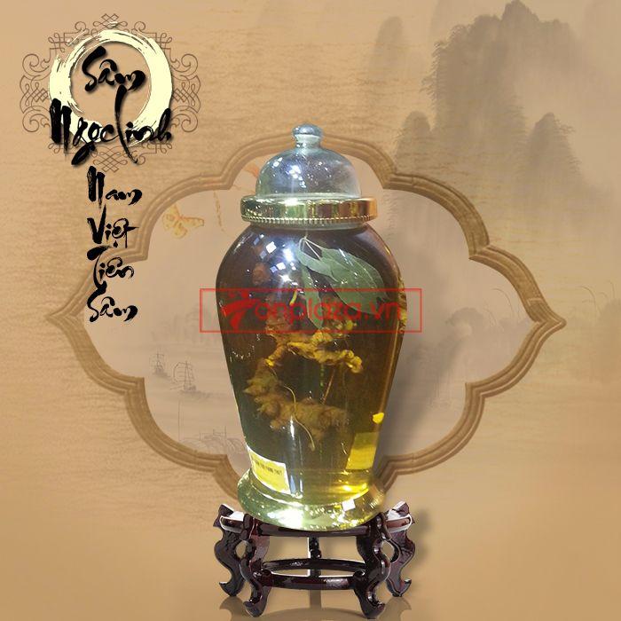 Bình nhân sâm ngọc linh dáng cây tùng loại 9 lạng 1 củ  2