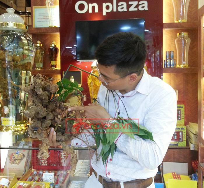 Bình sâm Ngọc Linh tươi 150 năm tuổi loại 2,4kg/củ 6