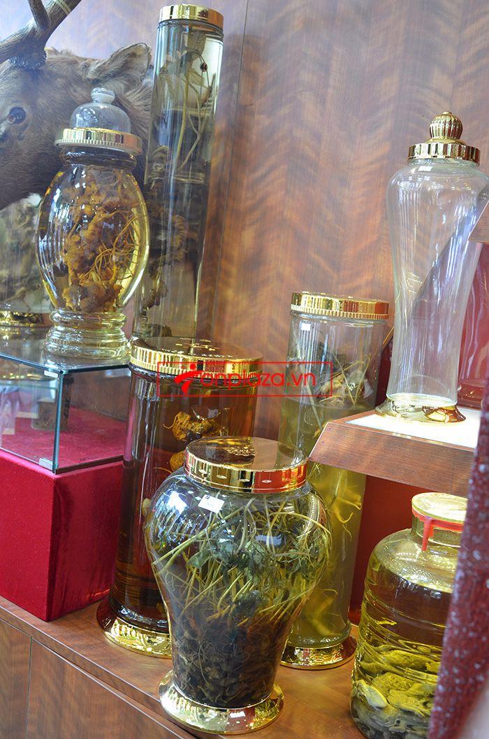 các mẫu bình ngâm sâm ngọc linh khác tại cửa hàng 4