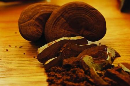 dùng nấm linh chi thanh nhiệt giải độc trong ngày nóng