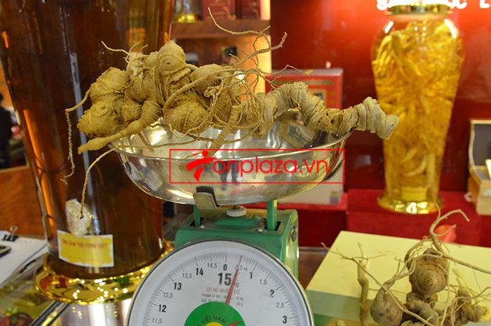 Những mẫu sâm ngọc linh khác hiện đang có tại Onplaza Việt-Pháp 7