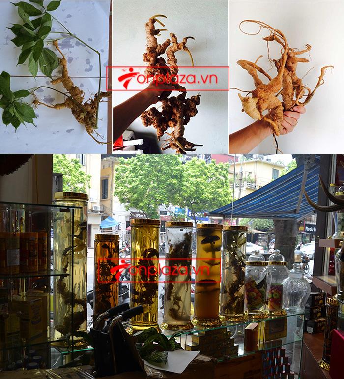 Những sản phẩm sâm ngọc linh khác tại Onplaza Việt-Pháp 1