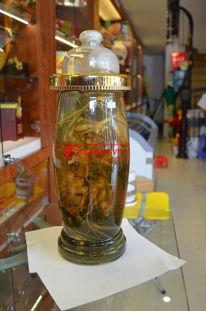 Giới thiệu một số mẫu sâm ngọc linh khác hiện có tại Onplaza Việt-Pháp 1