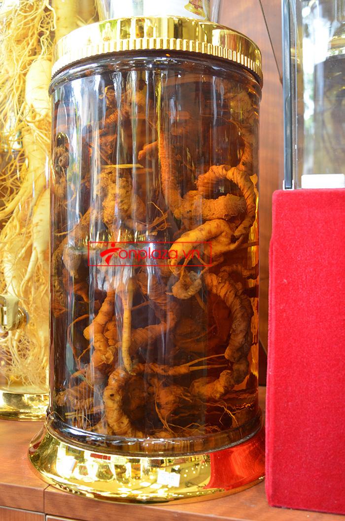 Giới thiệu một số mẫu sâm ngọc linh khác hiện có tại Onplaza Việt-Pháp 2