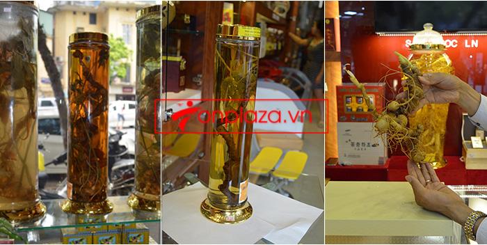 Giới thiệu một số mẫu sâm ngọc linh khác hiện có tại Onplaza Việt-Pháp 5