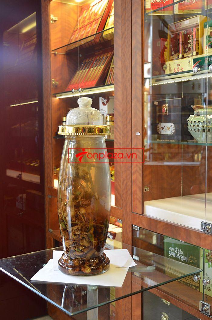 Bình ngâm sâm Ngọc Linh tươi 41 lít loại 2,3kg/củ 4