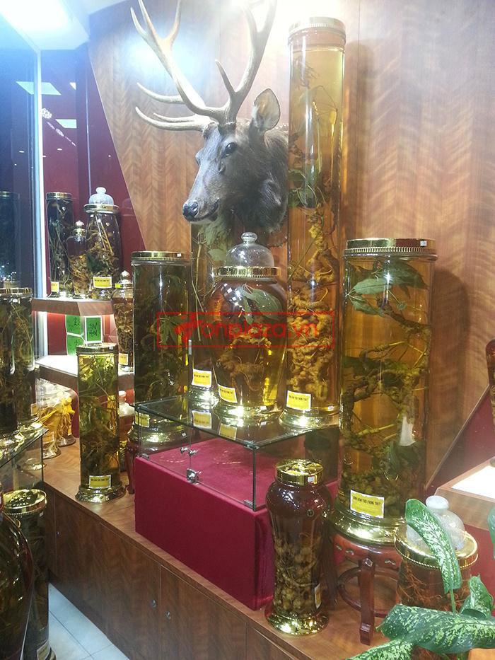 hình ảnh trưng bày các sản phẩm sâm ngọc linh khác tại cửa hàng 2