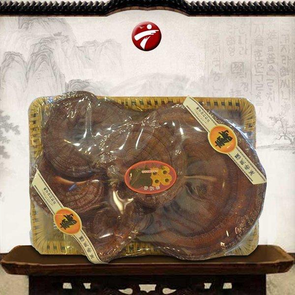 Nấm linh chi đỏ Hàn Quốc là món quà cho sức khỏe