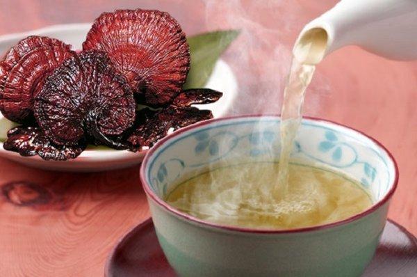 Uống nước nấm lim xanh hàng ngày để giải độc gan
