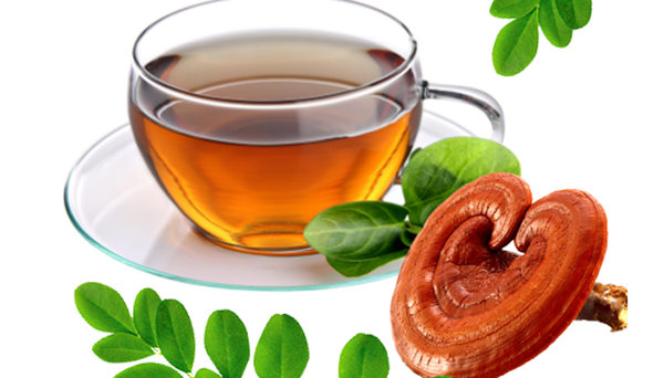 Uống nước nấm linh chi giảm cân an toàn