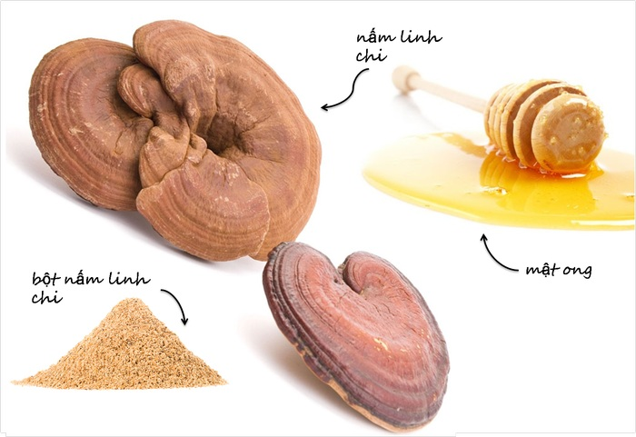 Nấm linh chi kết hợp với mật ong hãm nước uống