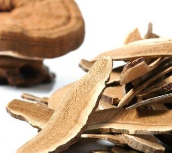 Có nhiều cách sử dụng nấm linh chi