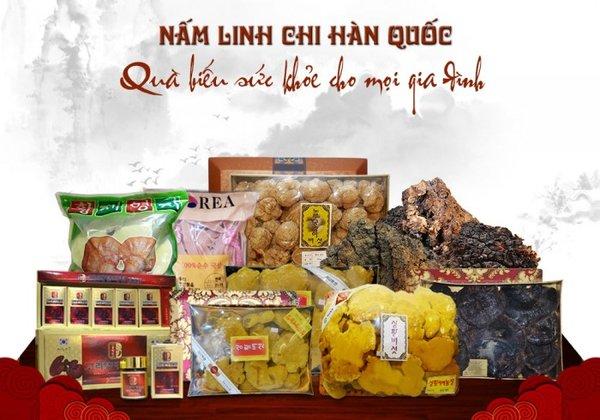 Lựa chọn sản phẩm quà biếu nấm linh chi chất lượng