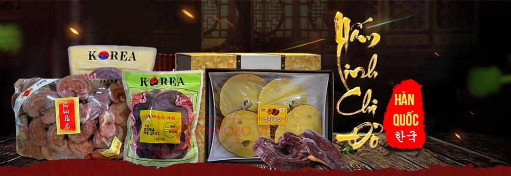 một số sản phẩm nấm linh chi đỏ