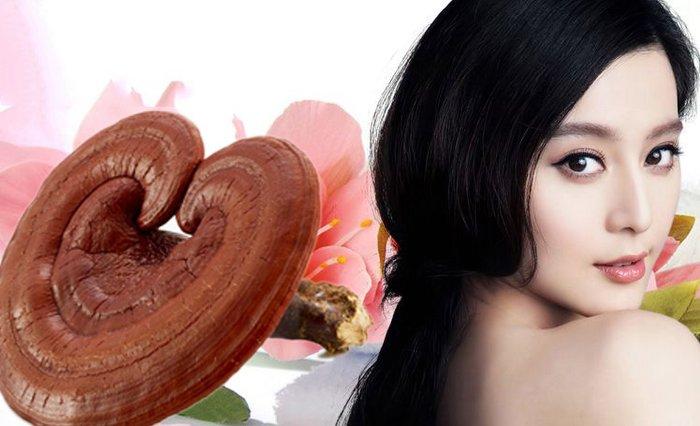 nấm linh chi tốt cho mái tóc