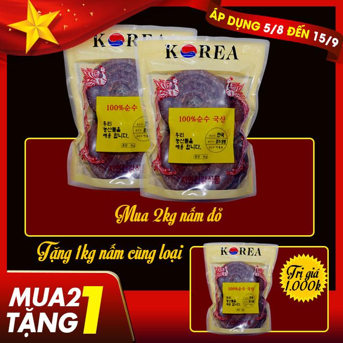 Nam-linh-chi-tai-do-6-nam-tuoi-300x300