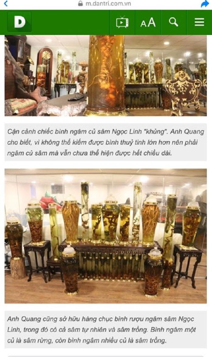 Một góc BST Sâm Ngọc Linh của Anh Quang được báo dantri.com.vn đăng tải