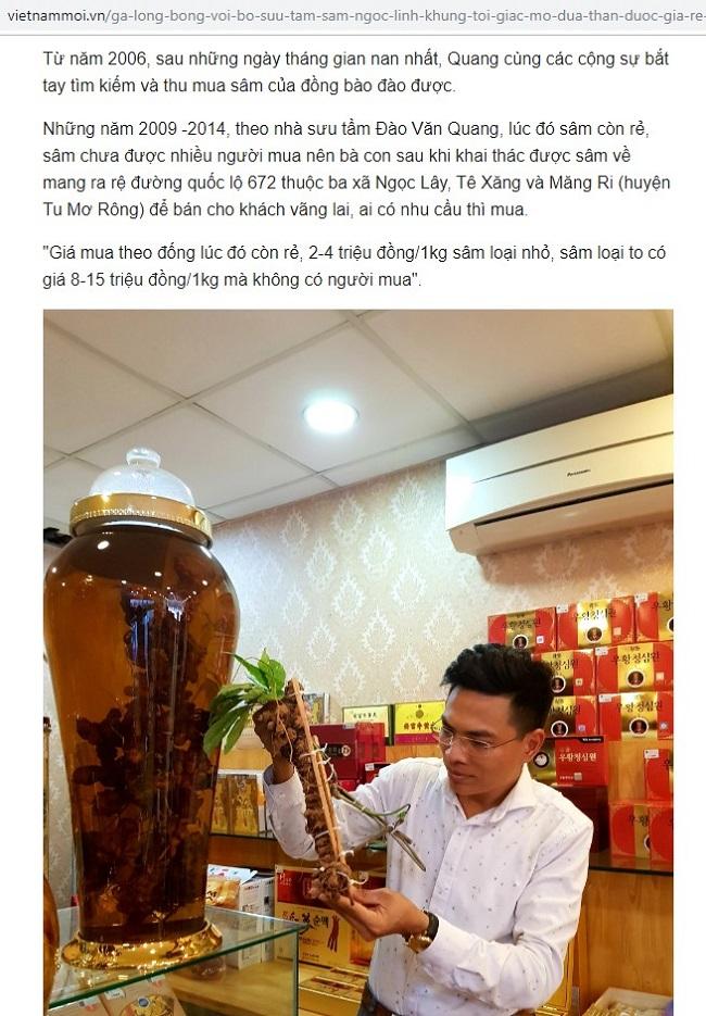Anh Quang với niềm đam mê sâm Ngọc Linh